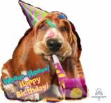 Pallone basshound