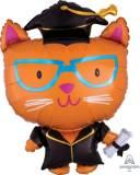 Laurea palloncino gatto laureato